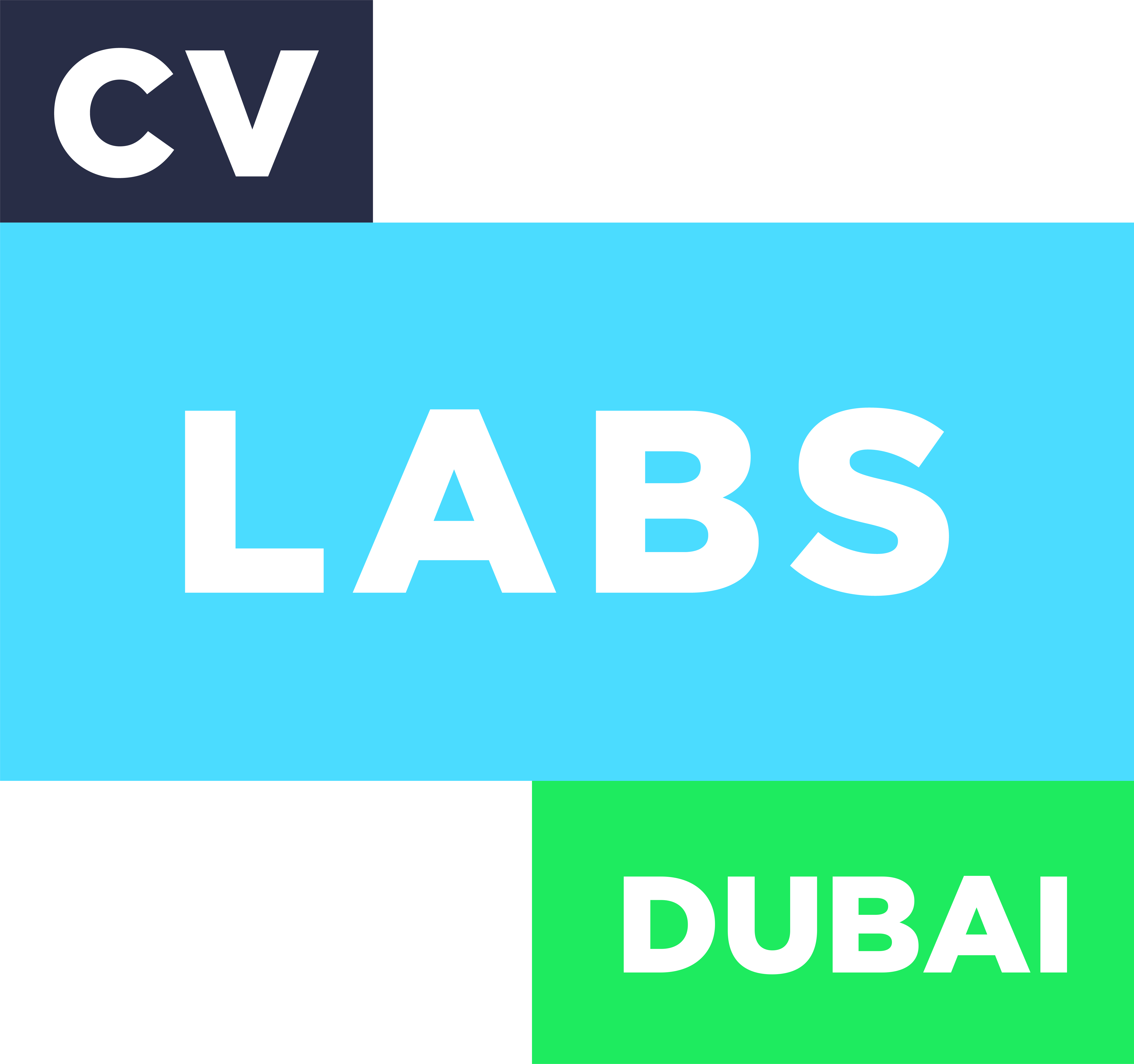 cv-labs-2